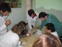 Imagem da notícia: Curso de Cirurgia e Prótese sobre Implantes