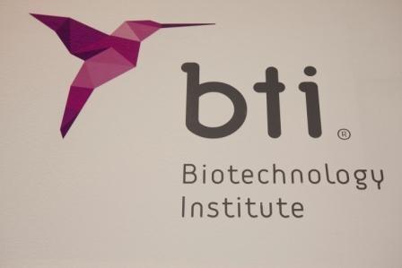 Imagem da notícia: BTI com nova imagem