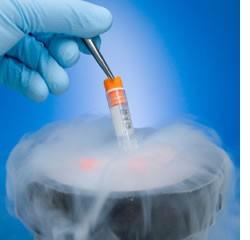 """Imagem da notícia: """"Avanços da Biotecnologia em Portugal"""""""