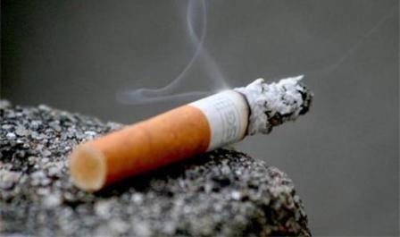 Imagem da notícia: Taxa de mortalidade por cancro deverá baixar 17 por cento em 2030