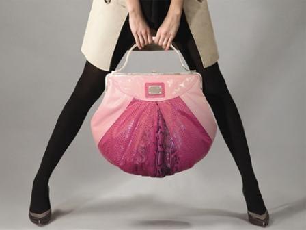 Imagem da notícia: Carteiras de mulher podem estar cheias de germes
