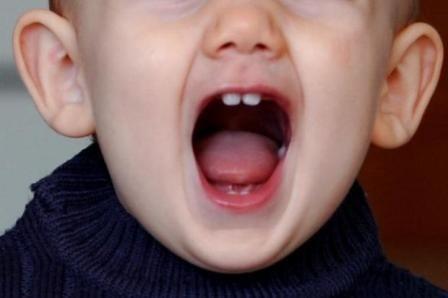 Imagem da notícia: Dentes decíduos podem ser fonte vantajosa de células estaminais