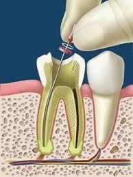 Imagem da notícia: Procura-se Médico Dentista