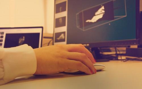 Imagem da notícia: Jovens portugueses desenvolvem 'software' médico gratuito