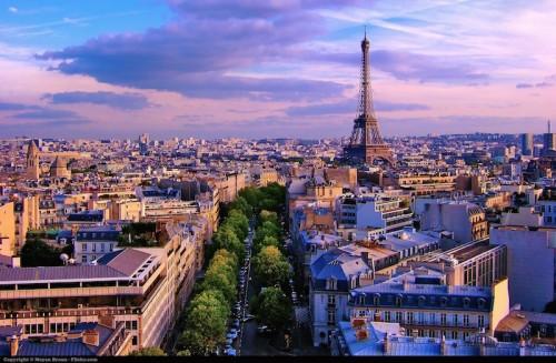 """Imagem da notícia: Paris recebe """"Tendências atuais dos dentistas em criar um sorriso para a vida"""""""