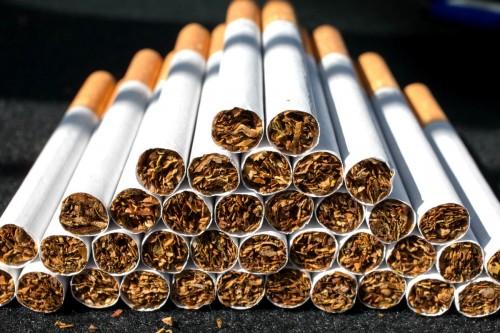 Imagem da notícia: OMD alerta para consequências do tabaco