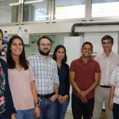 Imagem da notícia: Investigadores desenvolvem polímeros antimicrobianos
