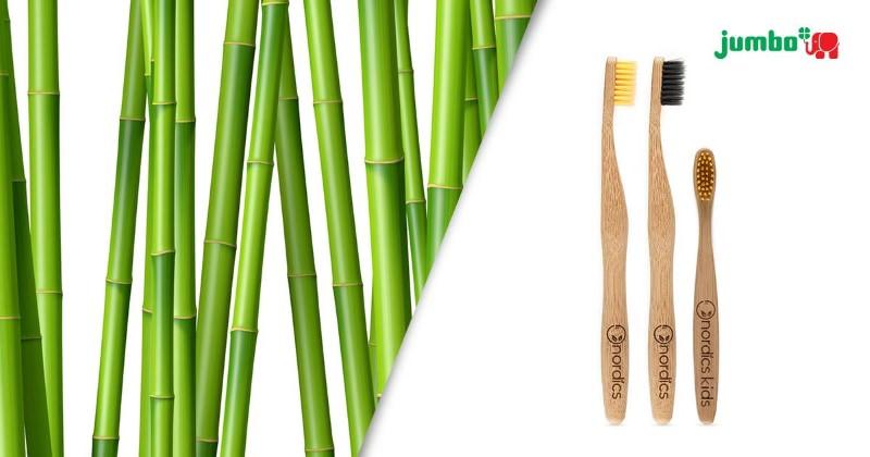 Imagem da notícia: Já conhece as escovas de dentes em bambu?
