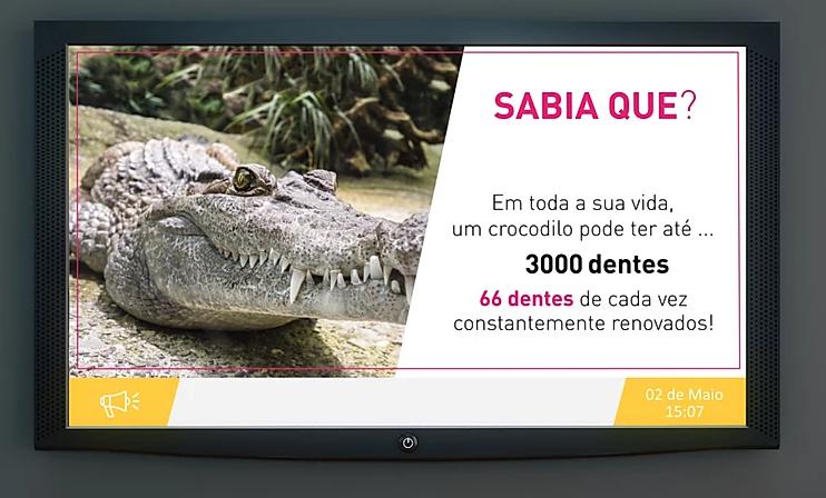 """Imagem da notícia: Couleur & Connection lança canal """"Wait & Smile"""""""