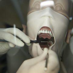 Imagem da notícia: CIROS e UICOB criam grupo de trabalho dedicado à medicina dentária no pós-pandemia