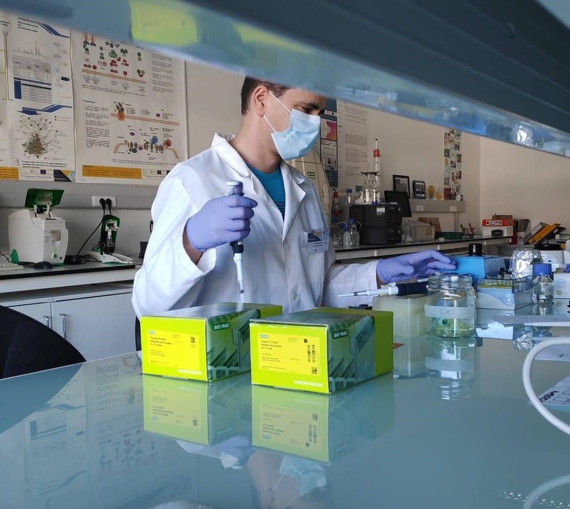 Imagem da notícia: Covid-19: investigadores portugueses estão a desenvolver teste de saliva