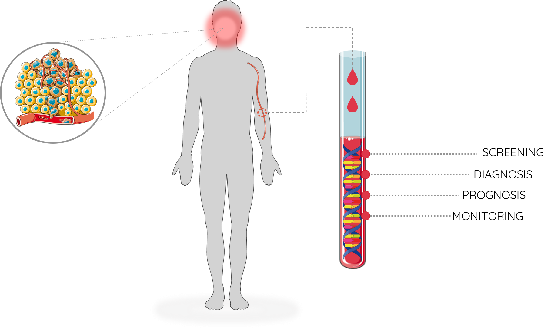 Imagem da notícia: Estudo da FMUC sobre cancro oral distinguido pela SPGH