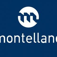 Imagem da notícia: Montellano realiza webinar sobre registo e licenciamento de Raio-X
